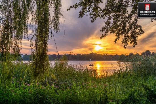 Hamburg Außenalster Sonnenuntergang