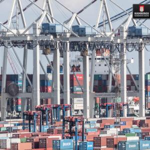 Hamburg Containerhafen auf Holz